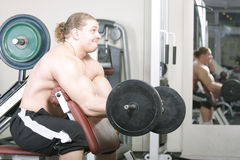 Training muscles Stock Photography