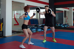 Training of muscular athletes in gym Stock Photography