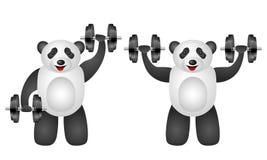 Training panda set Royalty Free Stock Images