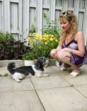 Training pet dog. Woman scolding, training, obedient ,obedience pet dog Stock Photos