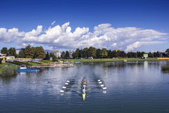 Training rowing on the lake Jarun Royalty Free Stock Photos