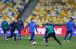 Training session of Ukraine National Football Team in Kiev Royalty Free Stock Images