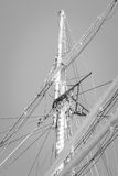Training ship Gorch Fock Stock Image