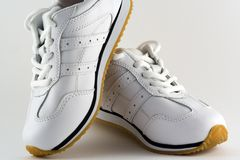 Training Shoes. A pair of trainers / sneekers Royalty Free Stock Image