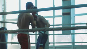 Training sparring of two boxers on a ring stock video footage
