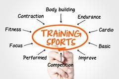 Training sports Stock Image