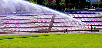 Training at stadium. Stock Image