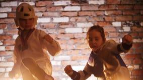 Training studio. Martial arts. Two girls showing karate skills. Mid shot stock video
