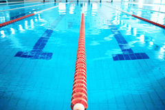 Training in the swimming pool Royalty Free Stock Image