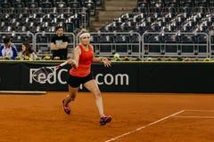 Training Timea Bacsinszky bei Fed Cup Rumänien 2018 stockbilder