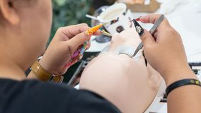 Training to build eyelashes on a silicone mannequin. Work with t royalty free stock photo