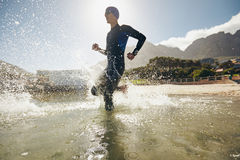 Training for triathlon competition. Male triathlete running into water. Training for triathlon competition in lake Royalty Free Stock Images