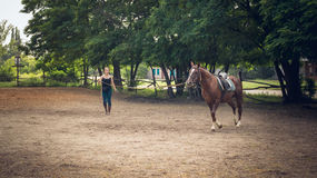 Training of young horses before the race. Young girl rider coached in the arena racehorse. Horse riding. Friendship, trust and partnership Royalty Free Stock Photo