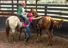 Training a young race horse in florida. Breaking a yearling to the saddle as seen at a training facility in ocala Stock Images