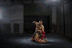 trainning箱子的战斗机 混合画法 免版税图库摄影