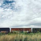 Trains avec le graffiti Image libre de droits