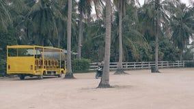 Trains de fille pour monter la motocyclette contre de grandes paumes sur le stationnement banque de vidéos
