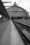 Trainshed e piattaforme della stazione della centrale di Anversa Fotografia Stock Libera da Diritti