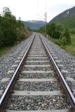 traintracks Стоковое фото RF