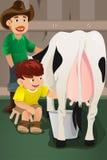 Traite d'une vache Photo stock