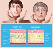 Traitement anti-vieillissement, de beauté, vieillissement et jeunesse, se soulevant, soins de la peau, concept de chirurgie plast photo libre de droits