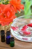 Traitement d'Aromatherapy photos libres de droits