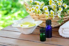 Traitement d'Aromatherapy Images stock