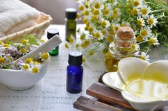 Traitement d'Aromatherapy images libres de droits