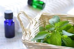 Traitement d'Aromatherapy avec la menthe photographie stock