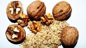 Traitement de noix d'automne Images libres de droits