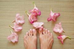 Traitement de station thermale avec de belles fleurs roses Photo stock