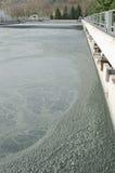 Traitement des eaux usées avec la boue biologique images stock