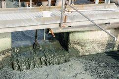 Traitement des eaux usées avec la boue biologique image libre de droits