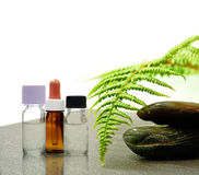 Traitement II d'Aromatherapy Photo libre de droits
