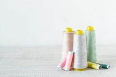 Traitements différés colorés d'amorçage Photo libre de droits
