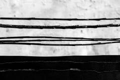 Traits horizontaux noirs et blancs abstraits Photographie stock