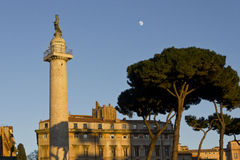 Trajan column with a tree and the moon Royalty Free Stock Photos