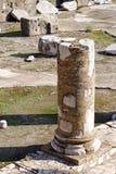Trajan's Forum Ruins Royalty Free Stock Photos