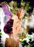 Traje adolescente de Fairie del juego del papel de la acción viva Imagen de archivo