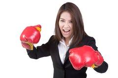 Traje atractivo del guante de boxeo de la mujer de negocios aislado Foto de archivo