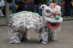 Traje chinês do dragão imagem de stock