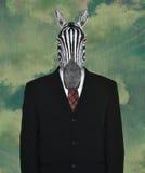 Traje de negocios surrealista, cebra de la fauna Imagenes de archivo