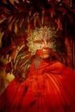 Traje del carnaval Imagen de archivo