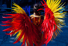Traje del carnaval de Notting Hill Fotos de archivo