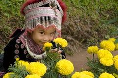 Traje tailandês do desgaste da menina tradicional do hmong étnico Imagens de Stock