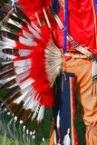 Traje tribal indiano Imagens de Stock