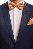 Traje y corbata de lazo Fotografía de archivo