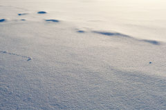 Trajectory lines on snow surface Royalty Free Stock Image