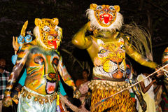Trajes do carnaval do leopardo Foto de Stock
