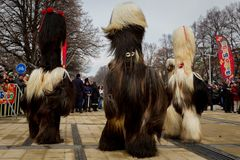 Trajes enormes dos Mummers peludos Fotos de Stock Royalty Free